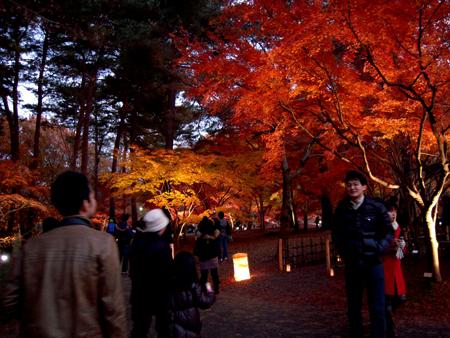 森林公園08.jpg