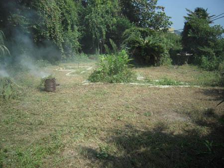 葉山草刈りafter05.JPG